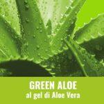 ecolavo green aloe